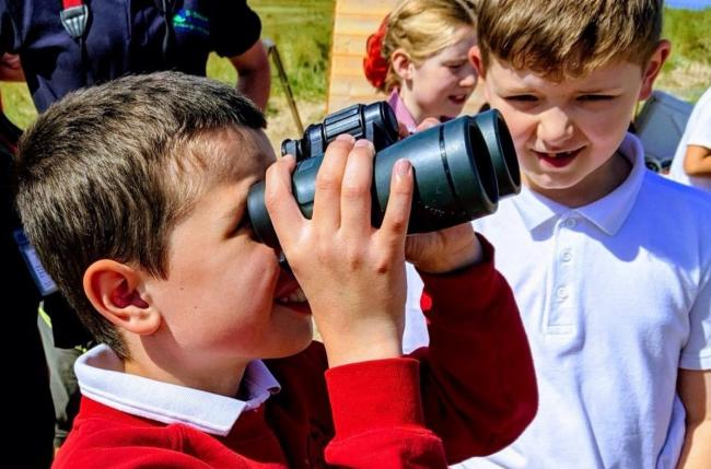 Children from seven schools visited the little tern colony