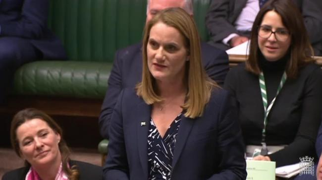 In her maiden speech in Parliament, Ynys Môn\'s first Conservative MP since 1987 used the opportunity to highlight the benefits of a new nuclear plant and its role in delivering carbon-free energy. Screengrab from Commons TV.