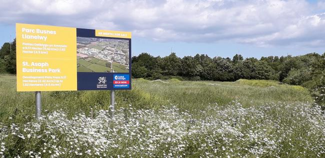 The site where the care home is set to be built. Picture: Kerry Roberts